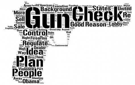 The State of Gun Control in the US