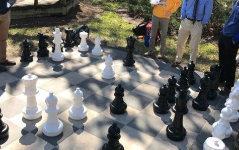 Chess Board Receives Positive Feedback