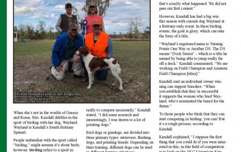 The World of Dog Sports