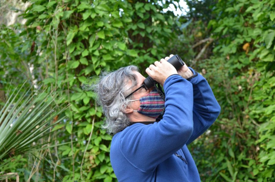 Bugle Bird Walks With Moyer